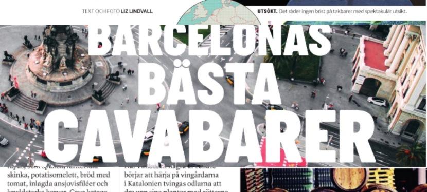 Barcelonas bästa cavabarer