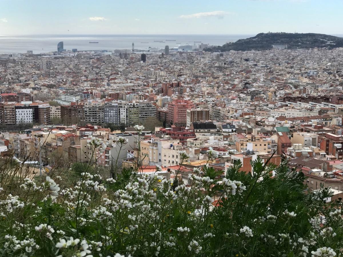 Semester i Barcelona i sommar?