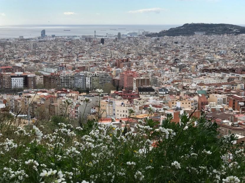 Semester i Barcelona isommar?