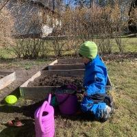 Trädgårdsdrömmar